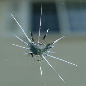 windshieldchip